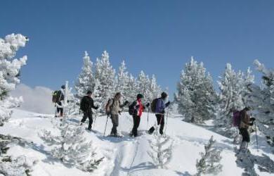 ski noel_0