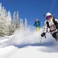 Package ski