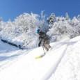 Ski Noel