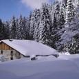 Ski aux Arcs en décembre