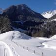 Piste de ski de fond via Flickr : Flo .