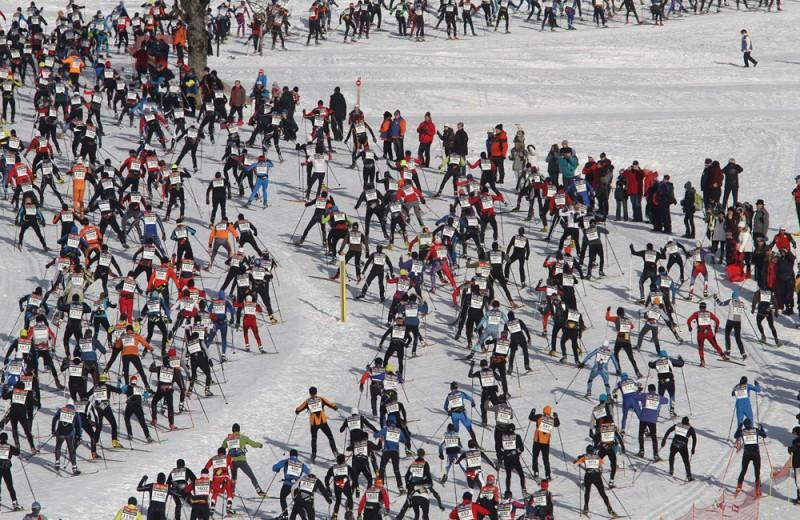 La Foulée Blanche 2015 sur le Massif du Vercors
