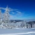 skiing-1231080_1280