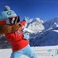 Charlotte, la marmotte qui fait du ski. Mont-Joux.
