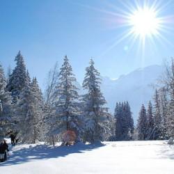 Ski en famille : où partir en dernière minute